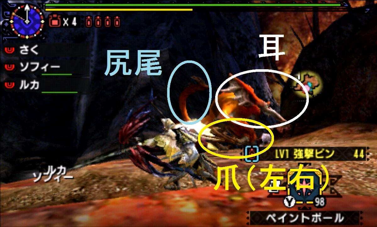 モンハン クロス 攻略 画像 ケチャワチャ 部位 破壊 弱点