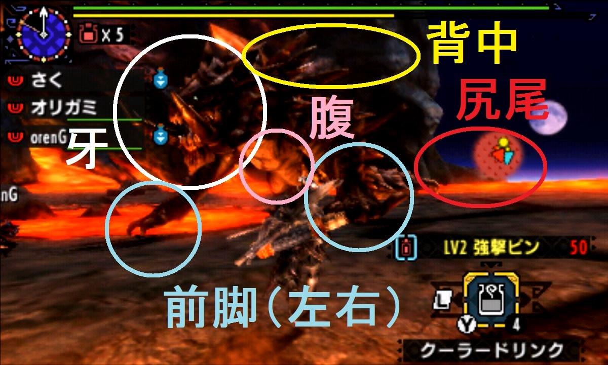 MHX モンハン クロス 攻略 画像 アカムトルム 部位 破壊 弱点