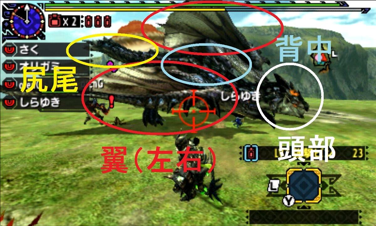 MHX モンハン クロス 攻略 画像 リオレウス希少種 銀レウス 部位 破壊 弱点
