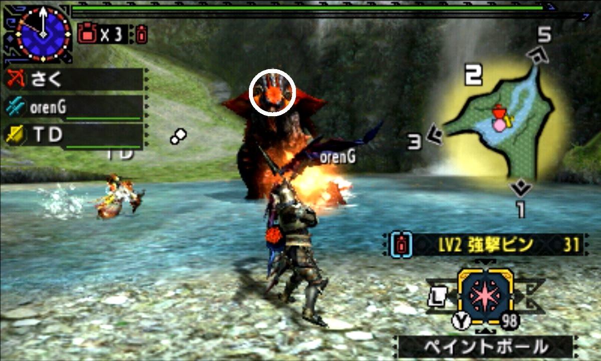 MHX モンハン クロス 攻略 画像 紅兜アオアシラ 部位 破壊 弱点