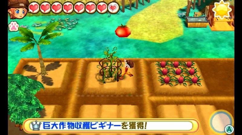 巨大トマト