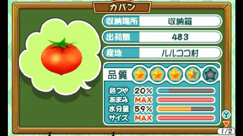 巨大トマトの品質