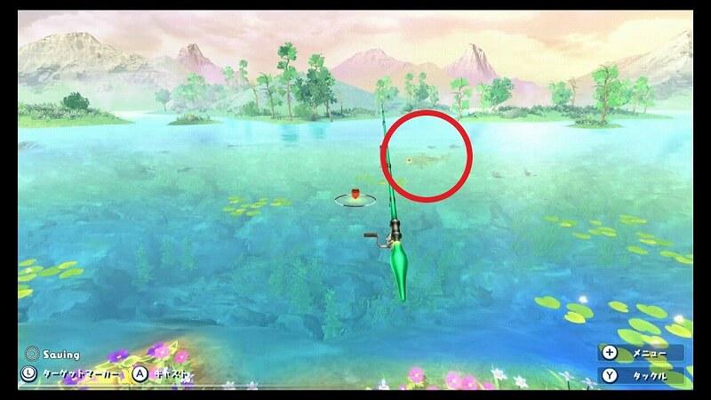 ナミタロウの魚影
